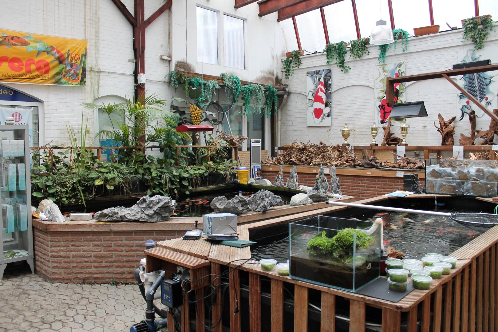 Teich das aquarium for Gartenteiche aus kunststoff